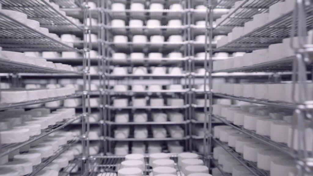 2021 06 17 Goats Cheese On Racks For Press Release